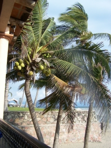 dovolena-mexiko